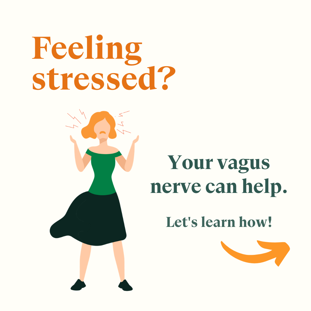 Stimulate This Nerve to Strengthen Your Stress Response